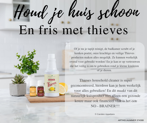 Kuisen met thieves